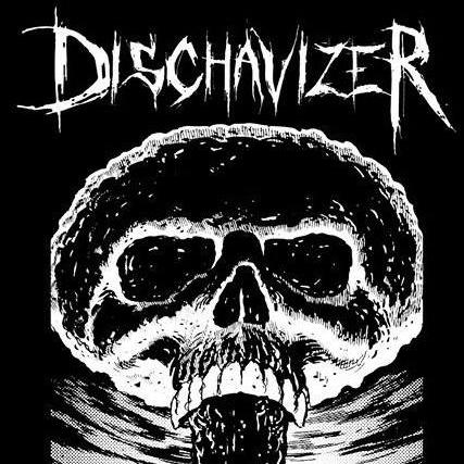 dischavizer