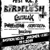 19. 1. 2019, Winter Infernal Fest 6. – Birdflash, Gutalax, Exorcizphobia, Pit Full Death, Perfecitizen